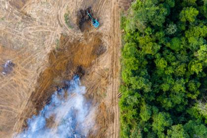 An aerial view of deforestation, as rainforest is removed to make way for palm oil and rubber plantations