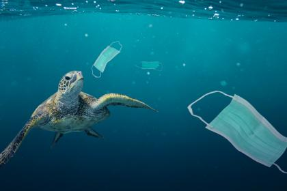 Growing plastic pollution in wake of COVID-19: how trade policy can help