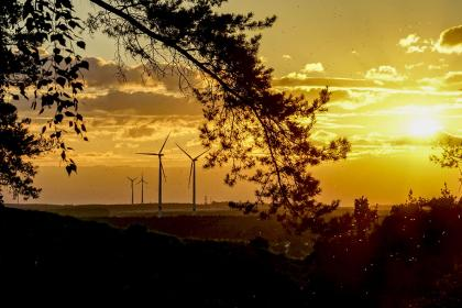 Windfarm in silhouette of sunset