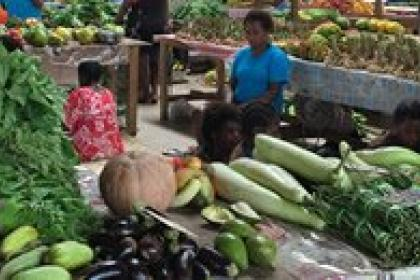 Vanuatu assesses its green export potential