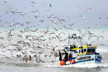 Oceans Forum: Use trade to help, not harm, global fisheries