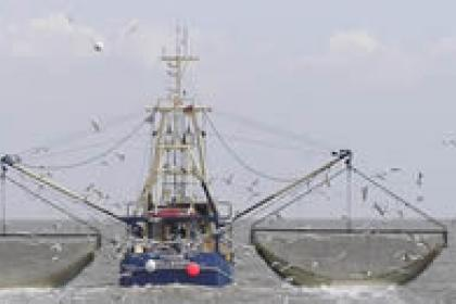 Costa Rica opts for trade-led sustainable fisheries strategy
