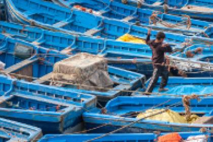 COVID-19 offers opportunities to make fishing industries more sustainable