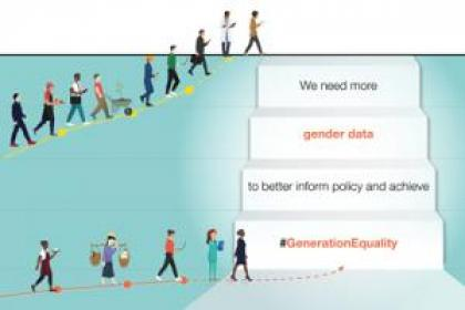 While we cannot sum-up women in numbers, gender data are important